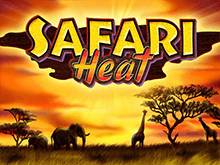 Бездепозитный бонус в автомате Safari Heat